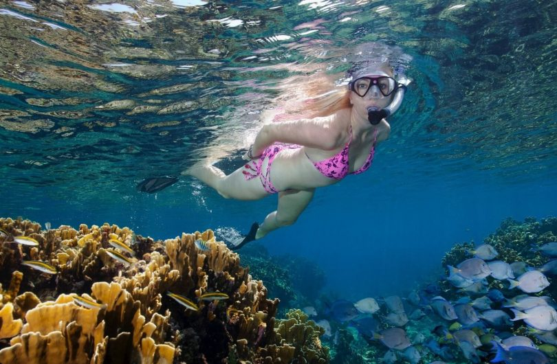 Snorkelling in St Lucia